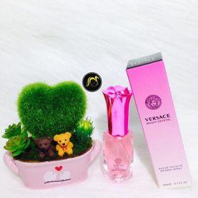 Rose Mary 20ml nước hoa chiết chuẩn Authenticvới 21 mùi hương HOT dành riêng cho phái đẹp giá sỉ
