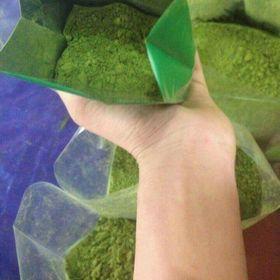 bột trà xanh nguyên chất giá sỉ