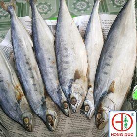 CÁ THU bè cá mặn giá sỉ