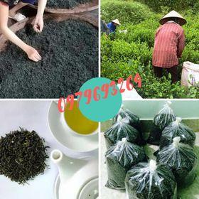Chè Thái Nguyên-đảm bảo sạch 100 giá giá sỉ