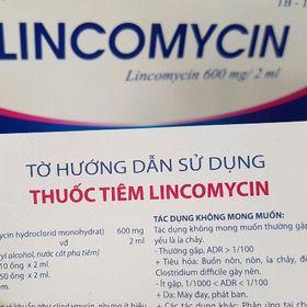 Lincomycin - Kháng sinh gà đá cựa giá sỉ
