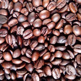 Sỉ cà phê nguyên chất hạt rang mộc Robusta Moka Cà Phê Mít giá sỉ