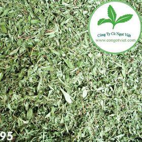 Trà cỏ ngọt khô - Lá