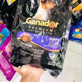 Thức Ăn Cho Chó Con Ganador giá sỉ