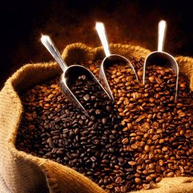 Cà phê Robusta rang mộc nguyên chất giá sỉ
