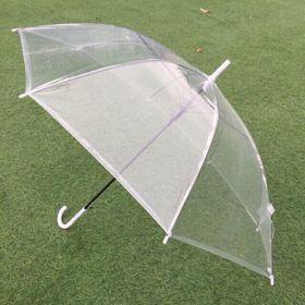 ô trong suốt đi mưa sống ảo giá sỉ