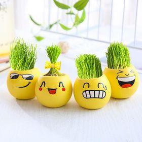 Chậu trồng cây mini hình mặt cười để bàn giá sỉ