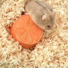 Mùn thơm lót chuồng cho hamster giá sỉ