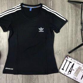 áo tập áo thể thao nữ giá sỉ