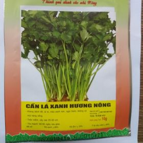 Hạt giống cần tây chịu nhiệt - 5gr giá sỉ