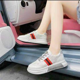 Giày bata GG 5 phân giá sỉ