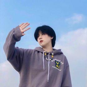Áo hoodie chống nắng thun nie ngoại in hình CÚ MÈO giá sỉ