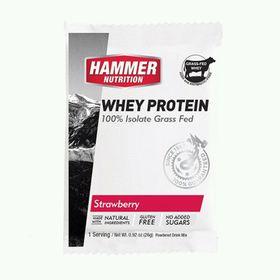 Hammer Nutrition-Sữa Tăng Cơ Whey Protein Isolate Grass Fed giá sỉ
