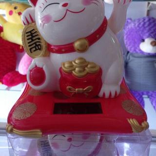 Mèo Thần Tài giá sỉ
