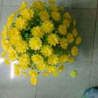 hoa giấy lụa giá sỉ
