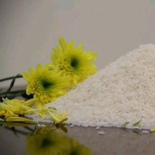 gạo nàng hoa giá sỉ