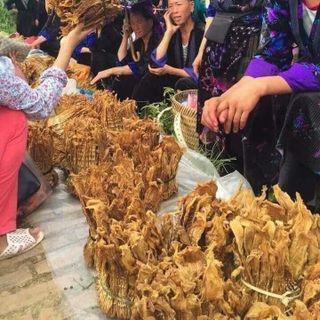 Măng khô đặc sản Tây Bắc Điện Biên giá sỉ