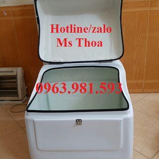 Thùng chở hàng giá rẻ thùng chở hàng sau xe máy thùng giao giá sỉ