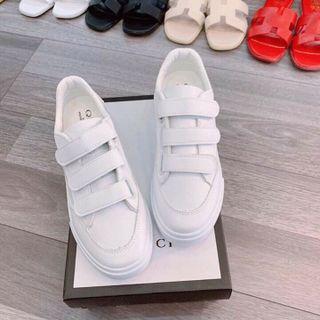 giày dán giá sỉ