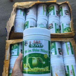 Mầm đậu oliver giá sỉ