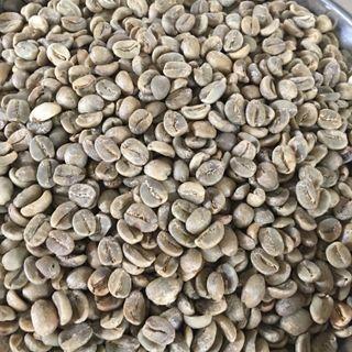 Cà phê nhân Arabica Lào giá sỉ