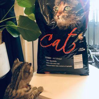 Thức ăn hạt cho mèo Hàn Quốc Cats Eye bao 135kg giá sỉ