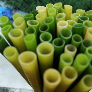 Ống hút cỏ bàng tươi Grass Straw giá sỉ