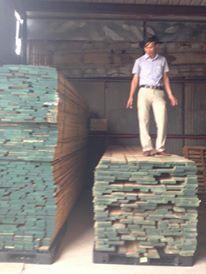 Đà Nẵng - Gỗ Xẻ sấy các loại - 914866969 - 919487189 giá sỉ