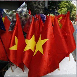 Cờ Việt Nam NHỎ - có cán giá sỉ