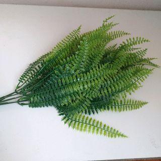 Dương xỉ nhựa dùng cắm điểm vào chậu hoa trang trí giá sỉ