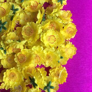 1 kg hoa mai trang trí tết giá sỉ