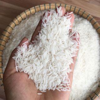 Gạo ST25 - Gạo ngon nhất thế giới 2019 giá sỉ