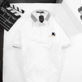 bộ sưu tập áo thun xịn xò tại ae mua lẻ giá cực yêu giá sỉ