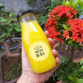 Chai thủy tinh đựng sữa hạt , nước trái cây 330ml giá sỉ